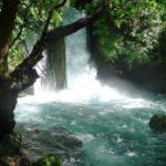 81 Grün Wasser Israel