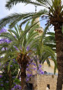 Moschee-Altstadt-Jerusalem