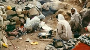 Begegnung im Sinai